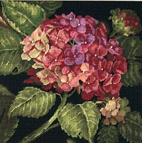 Dimensions 20053 Hydrangea Bloom