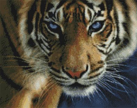 Kustom Krafts 3501 Blue Eyes-Tiger