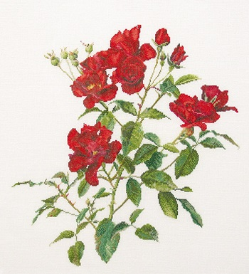 Thea Gouverneur GOK411 Red roses