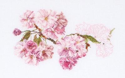 Thea Gouverneur GOK512 Prunus