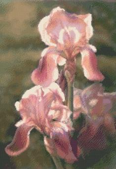 Kustom Krafts 7307 Sunlit Irises