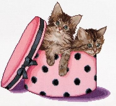 Thea Gouverneur GOK734A Kitten twins
