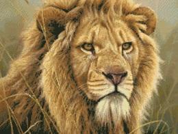Kustom Krafts 9854 King of Beasts- Lion