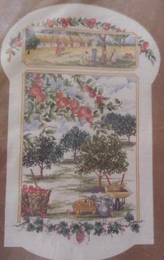Janlynn 105-11  Apple orchard