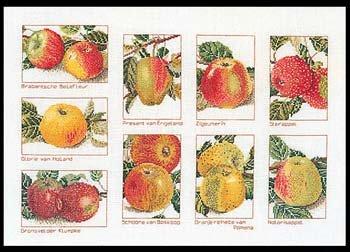Thea Gouverneur GOK2082 Apples