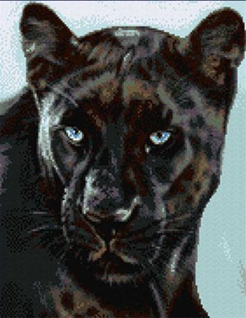 Kustom Krafts JW-01 Black Leopard