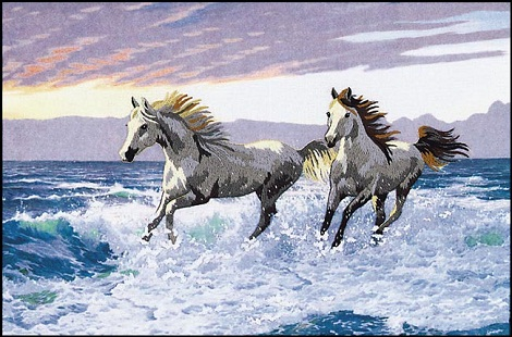 Sunset 11118 Wild horses