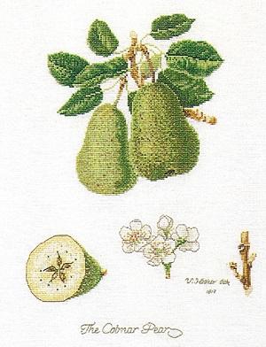 Thea Gouverneur Fruits