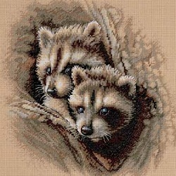 Dimensions 35253 Two Raccoon Cubs