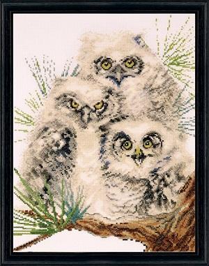Design Works 2781 Owl Trio