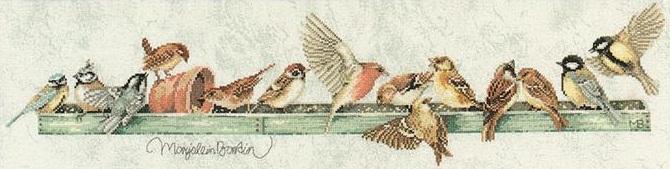 Lanarte PN 7963 Pecking order