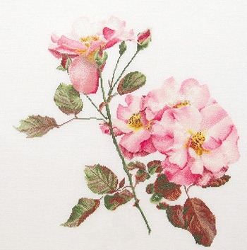 Thea Gouverneur GOK412 Pink roses