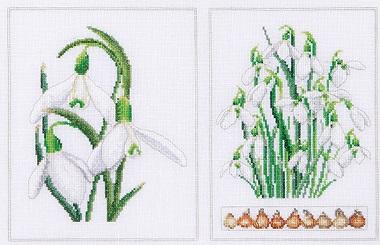 Thea Gouverneur GOK446 White flowers