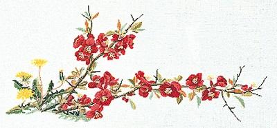 Thea Gouverneur GOK823 Floral bloom