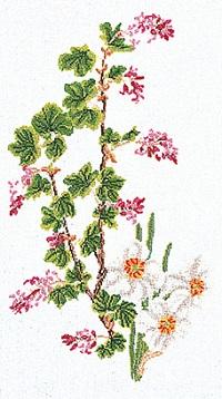 Thea Gouverneur GOK824 Floral