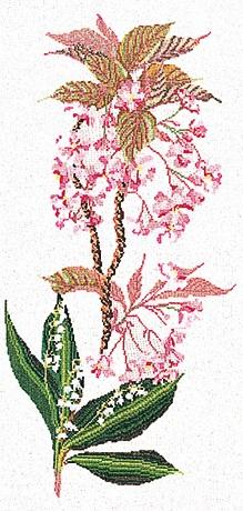 Thea Gouverneur GOK827 Floral
