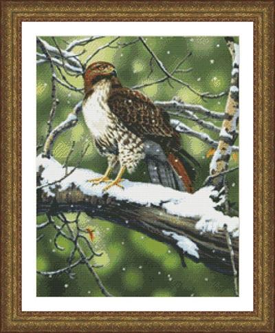 Kustom Krafts 9783 Red tailed hawk