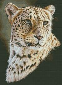 Kustom Krafts 9848 Persian Leopard
