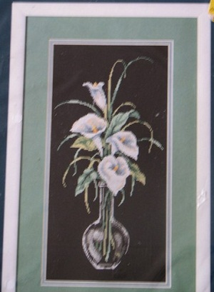 Sunset 13569  Calla lilies