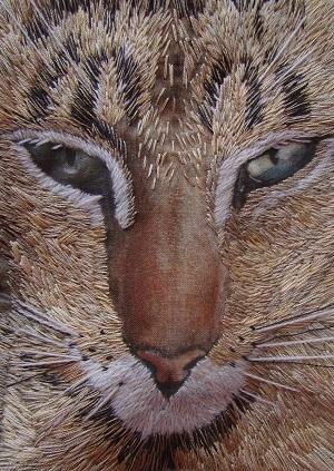 Madame Needle Oriental cat