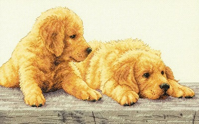 Dimensions 35309 Golden Retriever Puppies