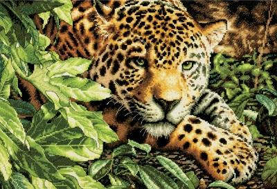 Dimensions 35300 Leopard on repose