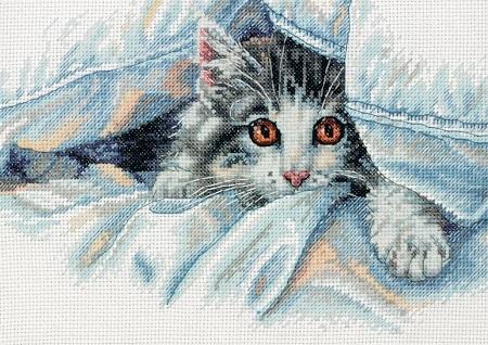 Dimensions 70-35341 Cat Comfort