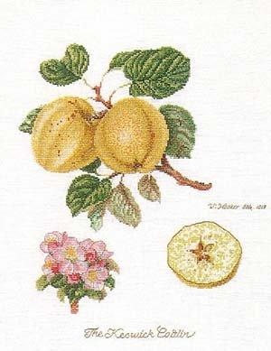 Thea Gouverneur GOK2057 Apples