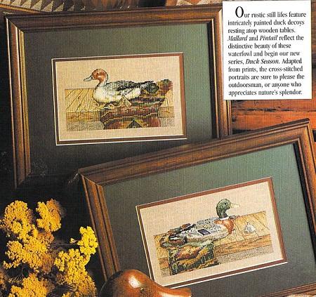 Mallard and Pintail Ducks