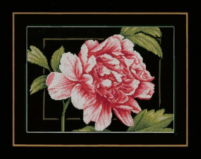 Lanarte PN155749 Pink rose
