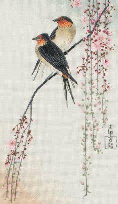 MAIA 01127 Swallows